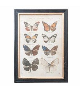 Landhaus Wandbild Schmetterling