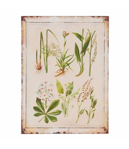 Garten Dekoschild Pflanzen