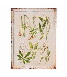 Shabby Chic Dekoschild Pflanzen