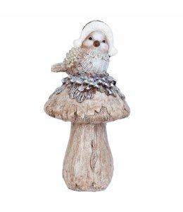 Garten Vogel auf Pilz