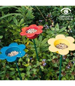 Garten Gänseblümchen zum Vögel füttern (3 Farben)