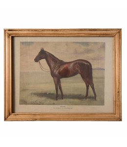 Shabby Chic Wandbild Pferd im englischen Landhausstil