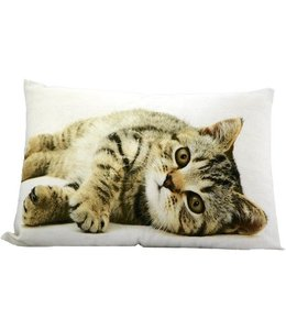 Dekokissen Katze