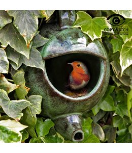 Garten Rotkehlchen Nistkasten - Englische Teekanne, grün