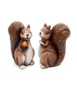 Landhaus Eichhörnchen Pärchen