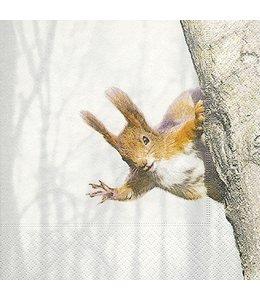 Landhausstil Servietten Eichhörnchen im Winterwald