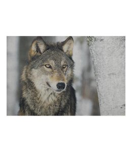 Garten Türmatte Wolf