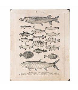 Landhaus Wandbild Fische