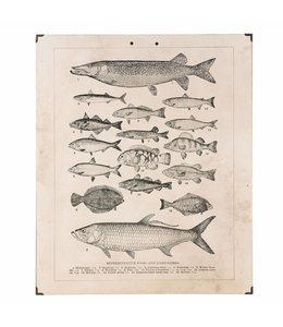 Shabby Chic Wandbild Fische
