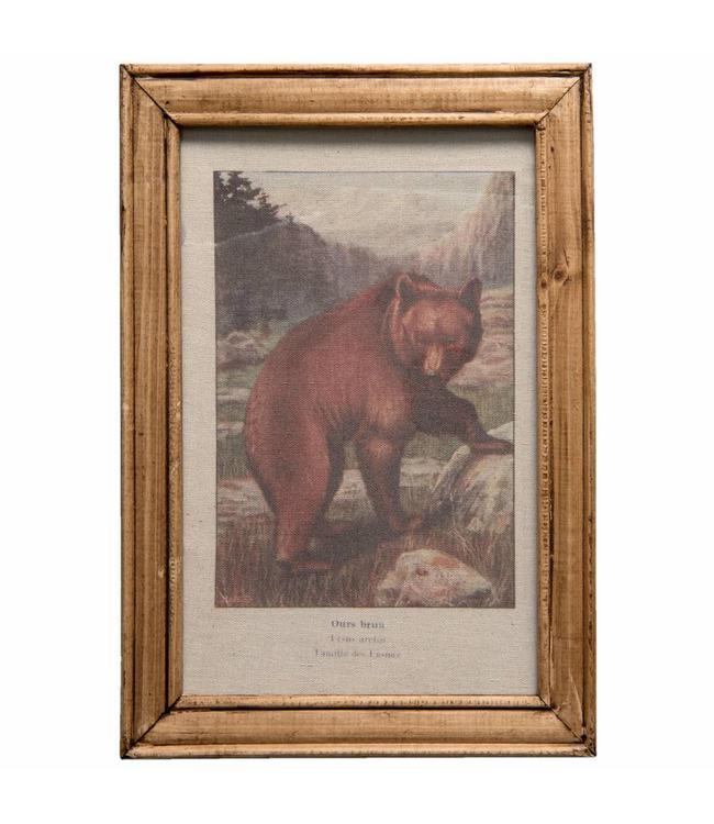 Wandbild Braunbär