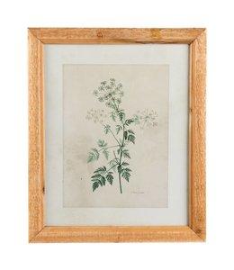 Wandbild Pflanze