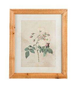 "Wandbild ""Weiße Rose"""