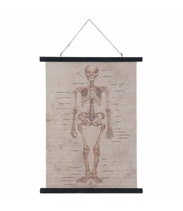 """Wandkarte """"Skelett"""""""