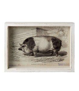 """Wandbild """"Schwein"""""""