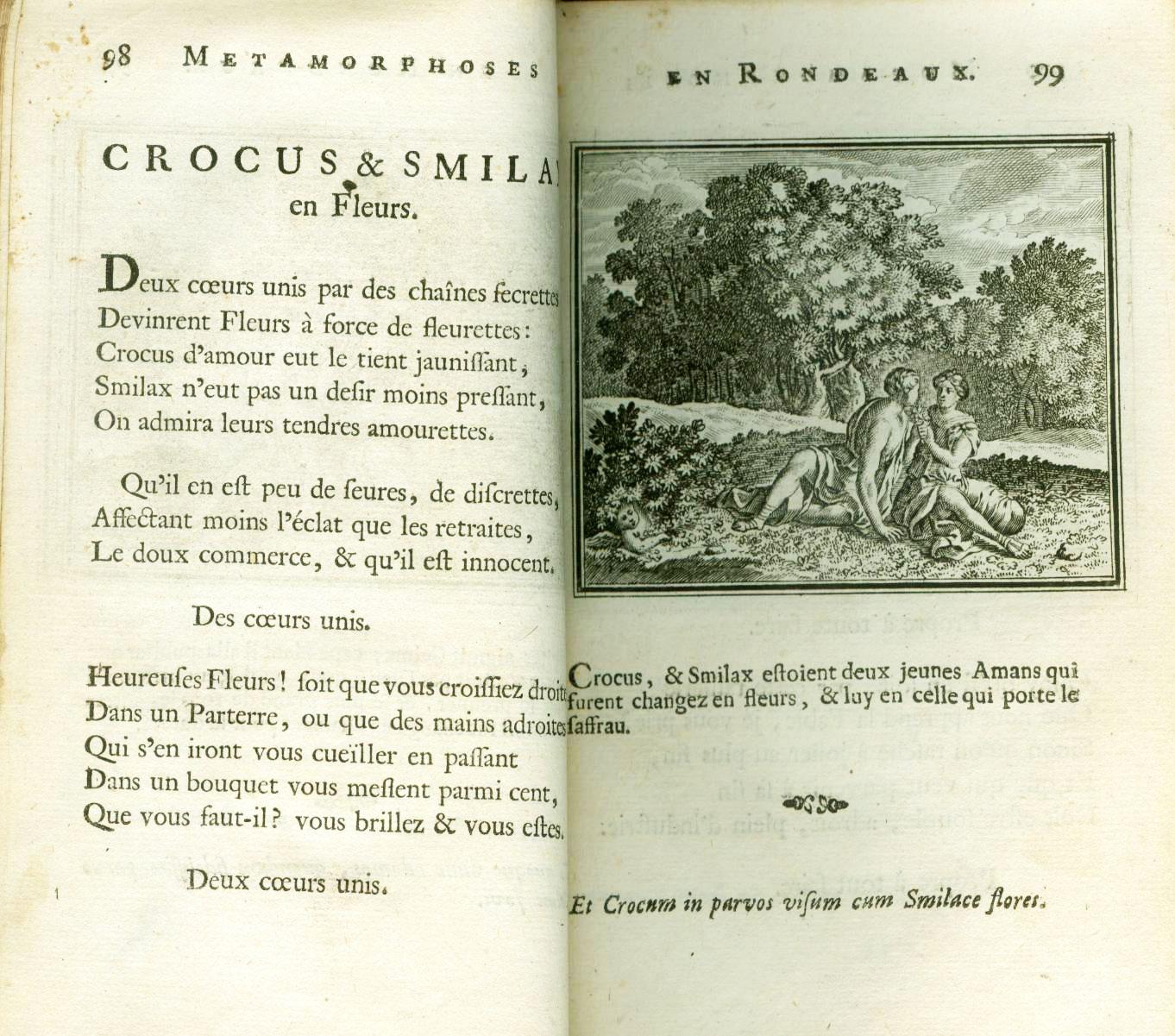 L'histoire de Krokos et Smilax dans la mythologie classique