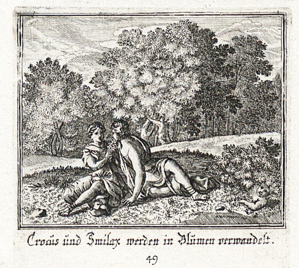 Het verhaal over Krokos en Smilax in de klassieke mythologie