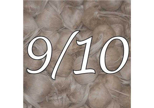 Maat 9/10
