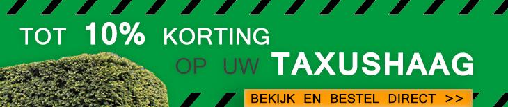 Korting Taxushaag Baccata TaxusTopper