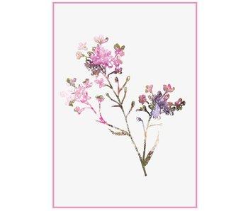 Sparkling Paper poster pink flower