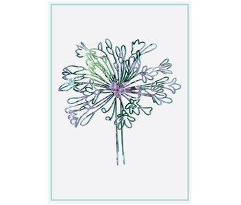 Sparkling Paper 10 postcards alium flower