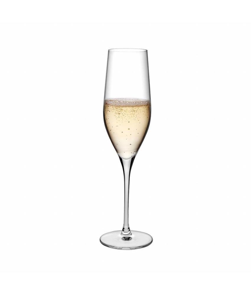Nude Vinifera champagne glas 255 ml 6 stuk(s)