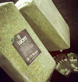 Lucvit - Slow Horse Food 25kg Pack * versandkostenfrei