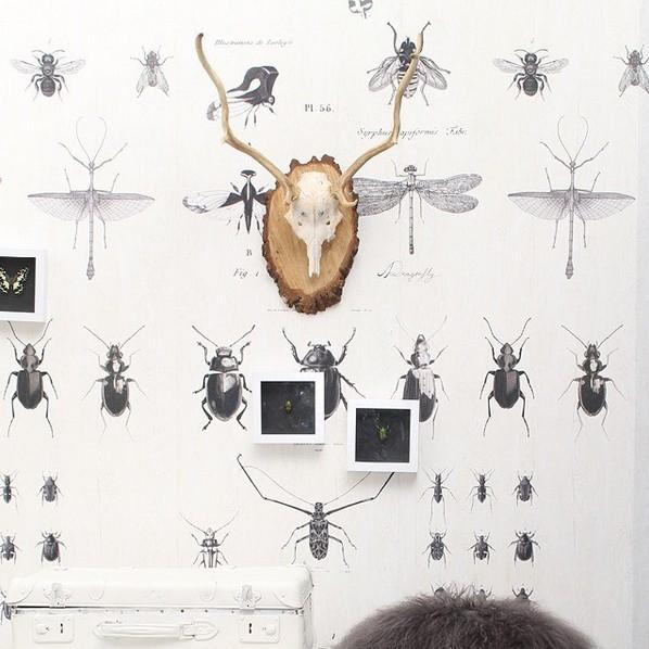 Onszelf Poster / Papier Peint Insectes - Enjoy OZ 3132 - 300x200cm - Onszelf