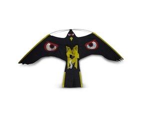 Bird of prey kites