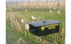 Roofvogels weren uit buitenuitloop