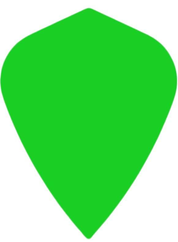 "Bull's POLYNA Plain Kite Flight ""Green"""