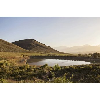 Olifantsberg zuid Afrika Nieuw: Olifantsberg Chenin Blanc 2014