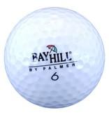 Arnold Palmer Bay Hill Lakeballs