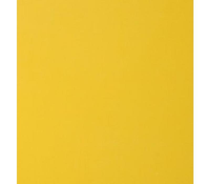 Vinyl Bright Yellow (G)