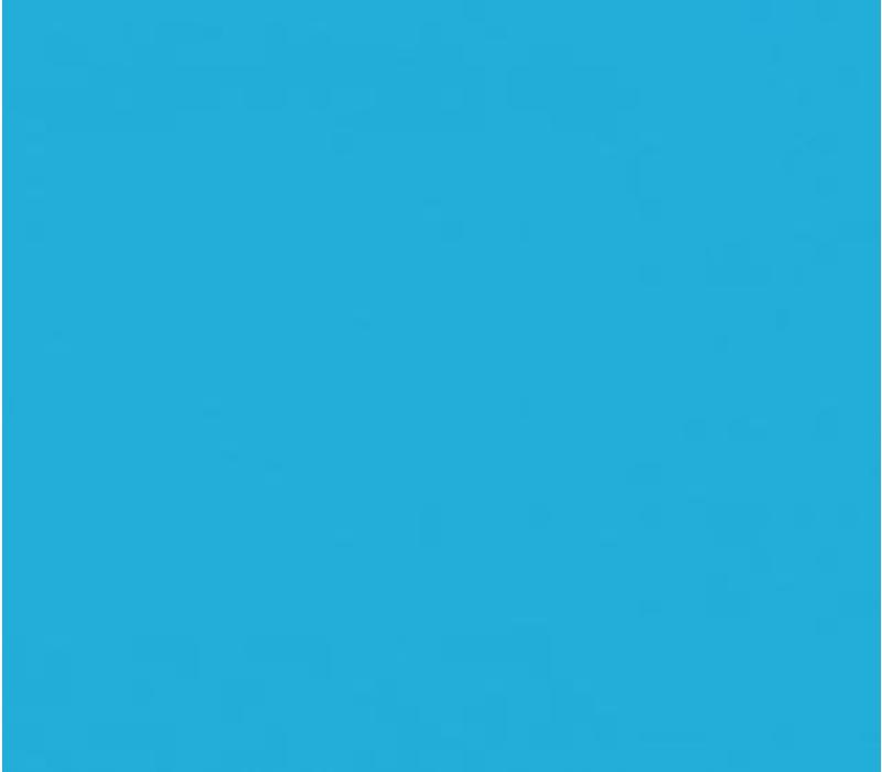 Vinyl Light Blue (G)