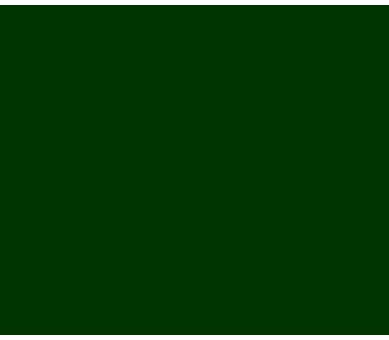 Vinyl Racing Green (G)