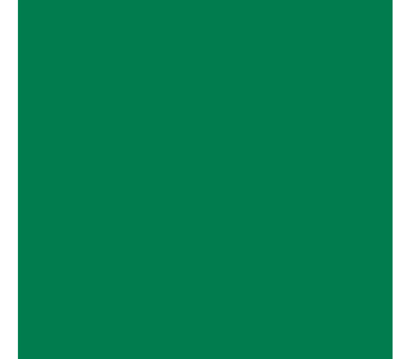 Nylon Flexfolie Groen