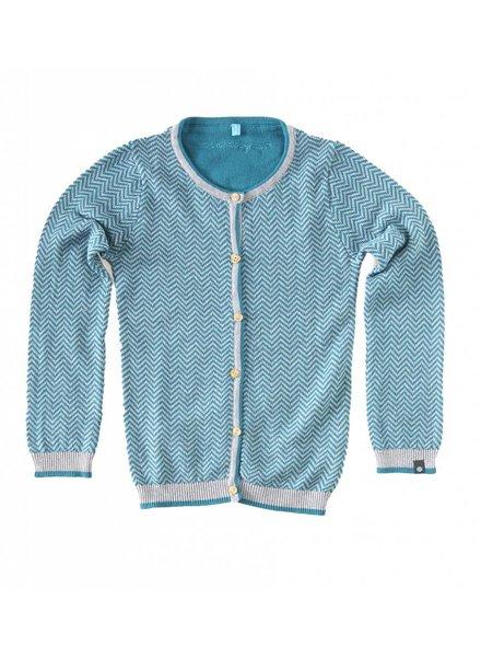 2d796a13ffa987 Little Label Vest groen zigzag