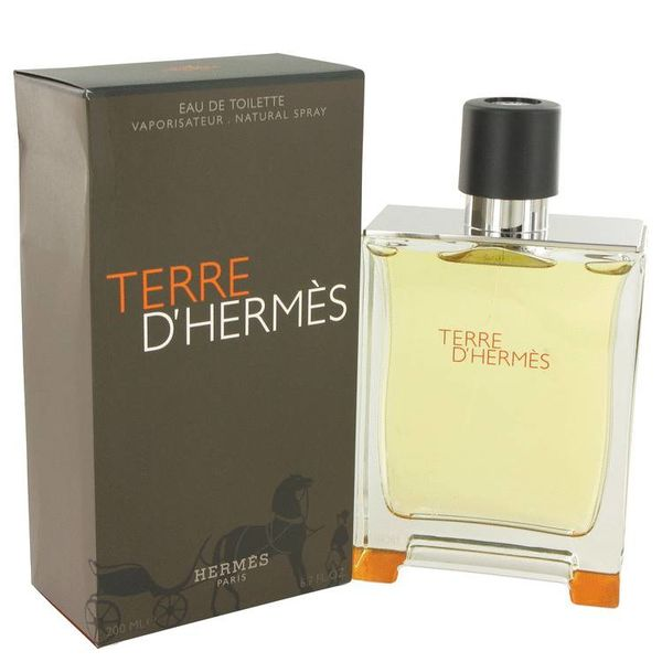 Hermes Terre D' Hermes Men eau de toilette spray 200 ml