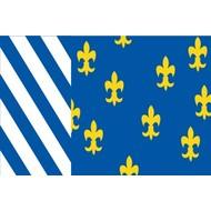 Vlag Bellingwedde Gemeente