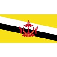 Vlag Brunei