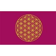 Vlag Flower of Life flag