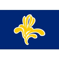 Vlag Brussells