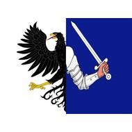 Vlag Ierland Ireland Provincie Connacht