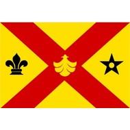 Vlag Binnenmaas Gemeente