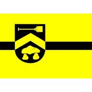 Vlag Borger-Odoorn Gemeentevlag