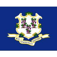 Vlag Connecticut Staat vlag
