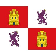 Vlag Castile and Leon flag