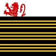 Vlag Eersel Gemeentevlag