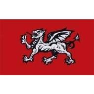 Vlag Engeland  Draak Dragon
