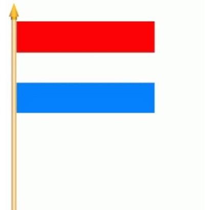 Stok- / zwaai-vlag Nederland vlag hand stok zwaaivlag